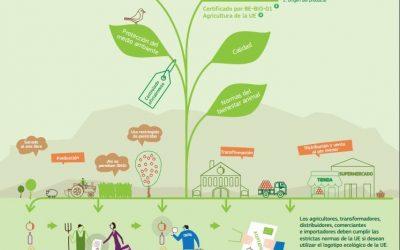 ¡Qué no te engañen! Aprende a diferenciar la comida ecológica
